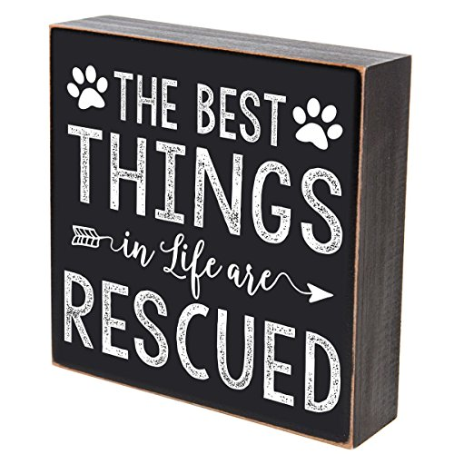The Best Things in Life are Rescued Pets gifts for dog cat Pet Lover gift box Birthday gifts for pets 6x6 by DaySpring Milestones (The Best things are rescued)