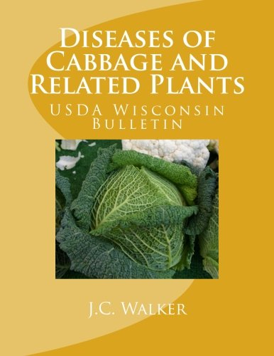 Diseases of Cabbage and Common Plants: USDA Wisconsin Bulletin