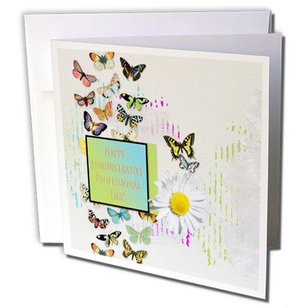 3dRose Pretty Butterflies and Daisy Flower, Administrative Professionals Day - Greeting Cards, 6'' x 6'', Set of 6 (gc_239563_1)