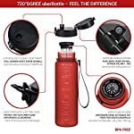 720°DGREE Tritan Fruit Infuser BPA Free Water Bottle 500ml for Gym, Sports, Office, etc. | Imperial Red
