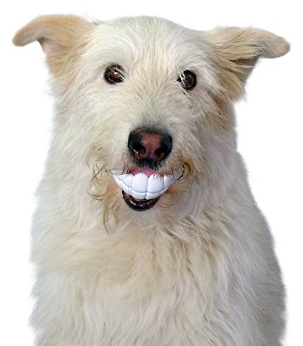 Moody Pet Humunga Chomp Dog Toy
