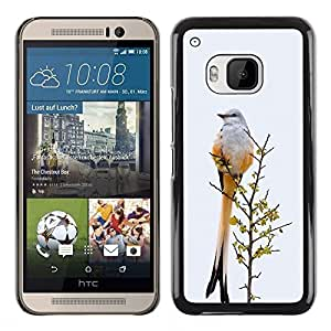 Plastic Shell Protective Case Cover    HTC One M9    Grey Winter Ornithology Feathers @XPTECH