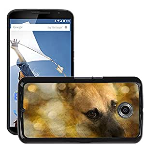 Super Stella Slim PC Hard Case Cover Skin Armor Shell Protection // M00146844 Dog Sch?¡èfer Dog Hybrid Dog Head Pets // LG Google Nexus 6