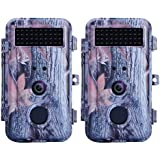 BlazeVideo 2-Pack HD 16MP 1080P Game Trail Camera Hunting Wildlife F2.0 Lens Low Glow Infrared Waterproof Motion Activated with Night Vision 40pcs IR LEDs Up to 65ft, Video Record, 2.36 LCD