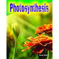 Photosynthesis (Science Readers: Content and Literacy)