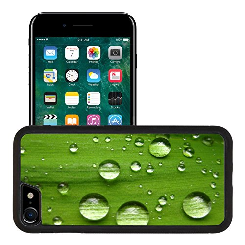 Liili Apple iPhone 7 iPhone 8 Aluminum Backplate Bumper Snap iphone7/8 Case iPhone6 IMAGE ID: 4772605 raindrops on lilly ()