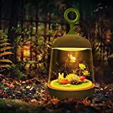 Glow Terrarium, Terrarium Kit for Kids with Multi-Color LED Night Light on Lid, Smart Touch DIY Plant Landscape for Children, Creativity for Kids, Gift for Kids (Green 1)