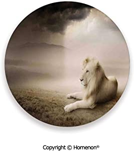White Lion Setting at Sunset Dramatic Sky Foggy Clouds Desert Sunbeams Wilderness Pose Rare,Hot Sale Coasters Protection From Drink Multicolor,3.9×0.2inches(6PCS),Protect Furniture From Coffee Or Tea
