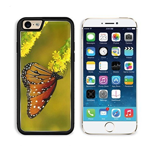 Stars Snap Design Black (Butterfly Monarch Yellow Flower Orange Black Animal Insect Apple iPhone 6 TPU Snap Cover Premium Aluminium Design Back Plate Case Customized Made to Order Support Ready Luxlady iPhone_6 Professional Case Touch Accessories Graphic Covers Designed Model Sleeve HD Template Wallpaper Photo Jacket Wifi Luxury Protector Wireless Cellphone Cell Phone by heywan)