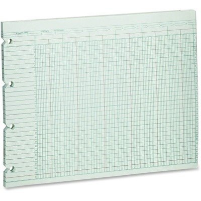 Wilson Jones : Accounting Sheets, 20-Col, 9-1/4 x 11-7/8, 100 Loose Sheets/pk, GN -:- Sold as 2 Packs of - 100 - / - Total of 200 Each