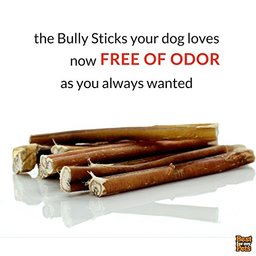 best for my pets odor free 6 inch bully sticks 8 oz pack animals supplies supplies dog. Black Bedroom Furniture Sets. Home Design Ideas