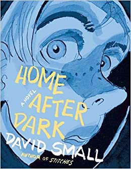 Image result for home after dark david small cover
