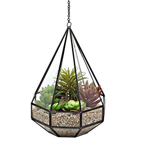 Clear Diamond Terrarium Hanging Holder