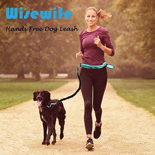Hands Leash Running Walking Hiking