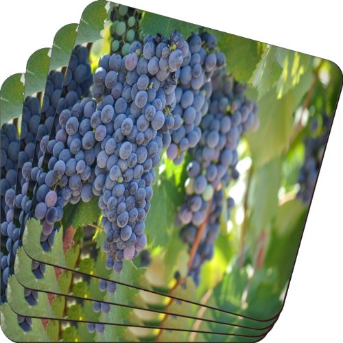Rikki Knight Red Wine Grapes on The Vine Design Soft Square Beer Coasters (Set of 2), Multicolor ()