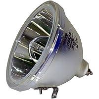 Optoma RD65 5 KV Strike Voltage Bulb Original Projector Bulb
