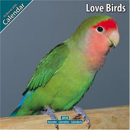 Love Birds 2010 Wall Calendar ()