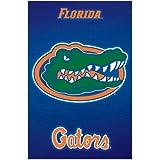 Florida Gators Logo NCAA Sports Poster Print