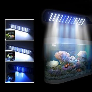 Excelvan negro acuario LED lámpara de clip (48 bombillas LED luz ahorro de energía EU: Amazon.es: Productos para mascotas