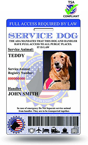 Holographic Service Dog ID Card (Custom) Includes Registration To National Dog Registry (Custom Service Dog Id Card compare prices)