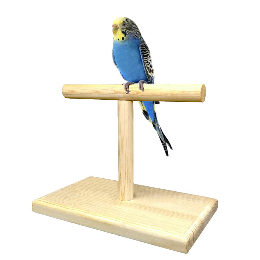 LINSHRY Bird Training Stand, Portable Tabletop Bird Perch Spin Training Perch for Parakeets Conures Lovebirds or Cockatiels by LINSHRY