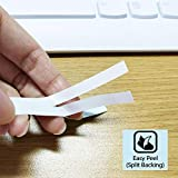 Absonic Compatible Label Tape Replacement for P
