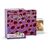 Schüßler-Salze - ganz einfach: Das Starter-Set (BUCH + KARTEN)