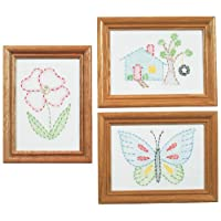 Jack Dempsey 488387 Stamped Embroidery Kit Beginner Samplers, 6 by 8-Inch 3-Pack-Outside Fun
