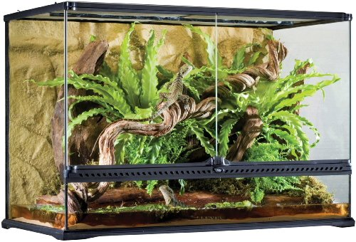 Exo Terra Glass Terrarium, 36 by 18 by 24-Inch
