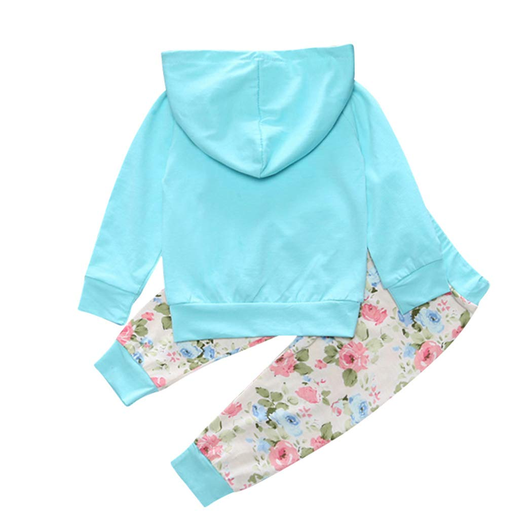 MetCuento Infant Baby Girls Floral Hooded Tops Pants Outfits Long Sleeve Fall Clothes Set