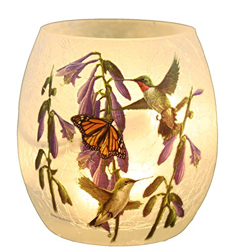 Lamp Glass Vase (Stony Creek - Decorative Glass Vase Interior Lit Small Lamp - Hummingbirds (Style A))