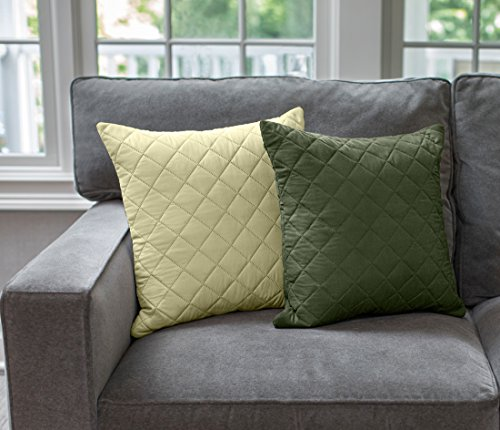 (Sofa Shield Reversible Set of 2 Throw Pillow Cases to Match Furniture Protector, Reversible, Great for Chair, Bed, Couch, and Dorm (18x18 Throw Pillows: Hunter Green/Sage))