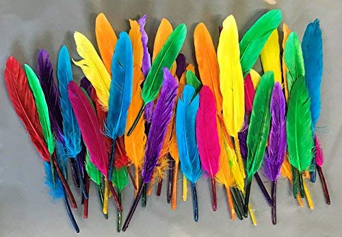 40 Indian Quill Feathers approx 14cm Assorted Colours
