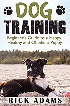 How To Train Your Dog Tricks Beginner