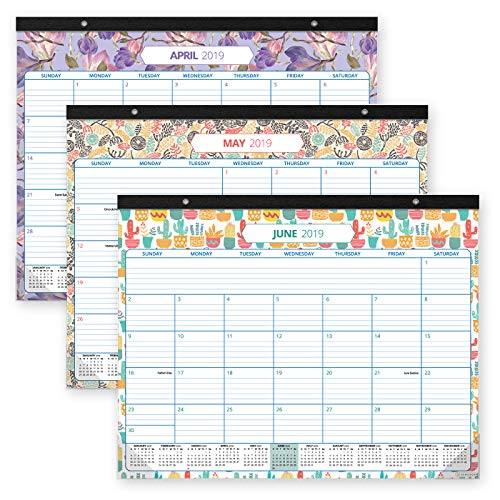 (Desk Calendar 2019-2020: Large Monthly Pages - 17