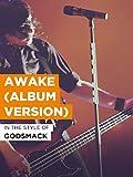 Awake (Album Version)