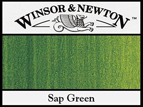 Winsor & Newton Artists' Oil Colour Paint, 37ml Tube, Sap (Tube Sap Green)