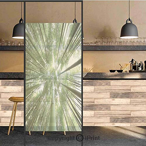 - 3D Decorative Privacy Window Films,Tropical Rain Forest Tall Bamboo Trees in Grove Exotic Asian Nature Zen Decor Style Image Decorative,No-Glue Self Static Cling Glass film for Home Bedroom Bathroom K