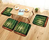 Printsonne Chair Cushions Trees Forest from Indoor Sunlight as Background Wooden Floorative Non Slip Comfortable W25.5 x L25.5/4PCS Set