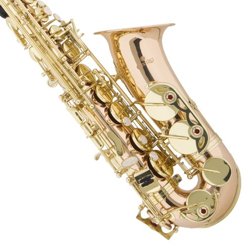 Cecilio 3Series AS-380 Brass Eb Intermediate to Advanced Alto Saxophone with Mouthpiece, Case, 10 Reeds and Accessories - Gold