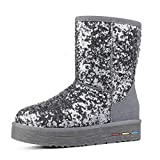 Women Winter Faux Suede Snow Boots Glitter Classic Slip-On Sequined Cloth Round Toe