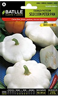 Semillas de Flores - Calabaza Luffa Planta de las Esponjas - Batlle: Amazon.es: Jardín