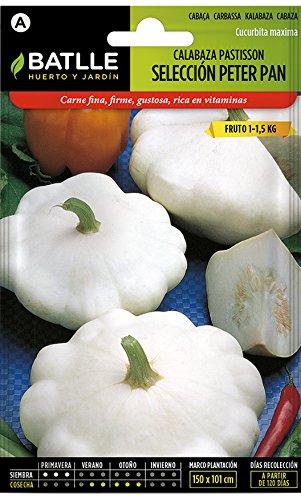 Semillas Hortícolas - Calabaza Patisson blanca Peter Pan - Batlle: Amazon.es: Jardín