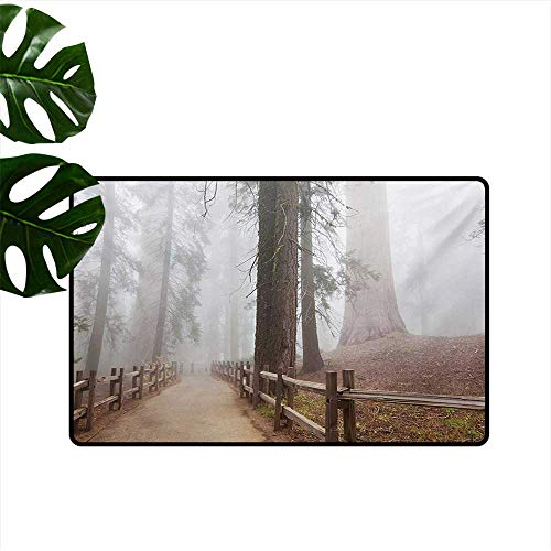Household Decorative Floor mat,Evergreen Forest and Walkway in Sequoia National Park Foggy Morning Nature Art 32