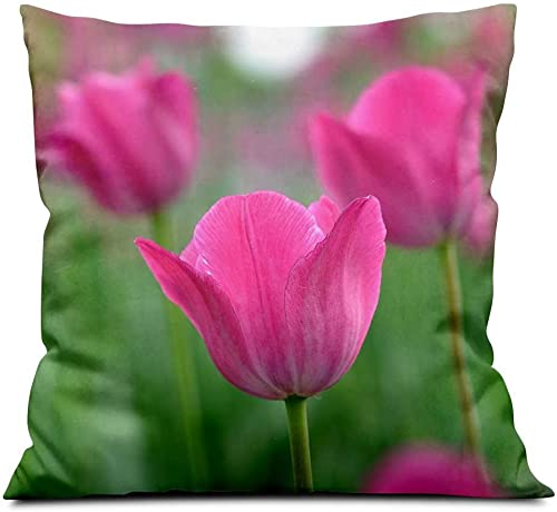 Pink Flowers, Tulips Square Soft Cloth Throw Pillows,Sofa Pillow Waist Pillow 18×18 inch