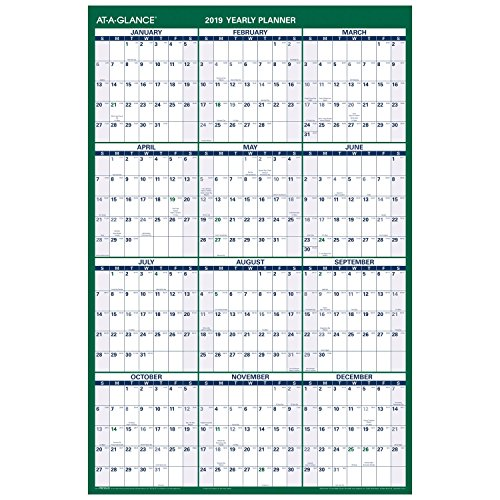 (AT-A-GLANCE 2019 Yearly Wall Calendar, Academic and Regular Year, 24