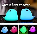 Coohole LED Charging Colorful Room Cute Dolphin Night Light Romantic Decor-Touch Sensor (White)