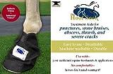 The Hoof Sock By Penn Equine Gear, Medium [Misc.] [Misc.]