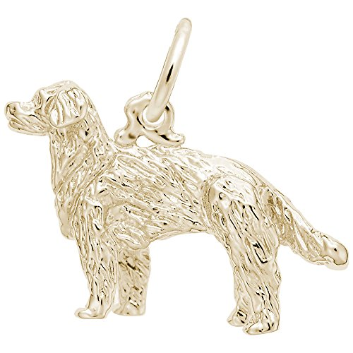 Plated Gold Dog Charm Retriever (Gold Plated Gldn Retriever, Dog Charm, Charms for Bracelets and Necklaces)