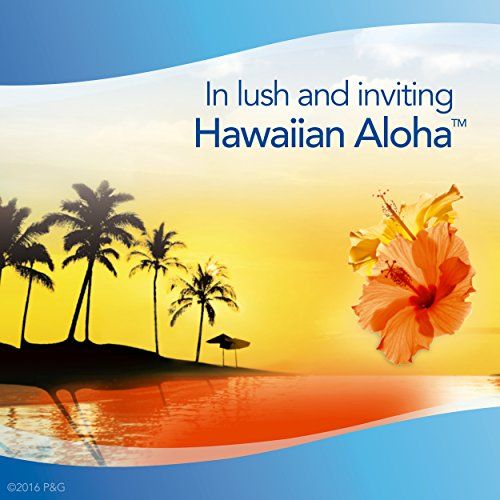 Febreze PLUG Air Freshener Refills Hawaiian Aloha (3 Count, 2.63 oz) - 3